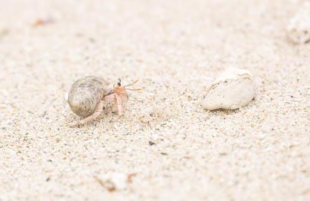 砂のように乾く